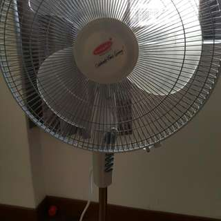 Europace Standing Fan. Only 4 Months Uswd... Still Under Warranty.power 60 Watts. Collection At Bayshore Park. Condition 10/10.