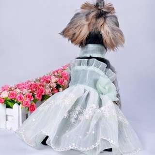 Pet Cloth 狗狗衣服