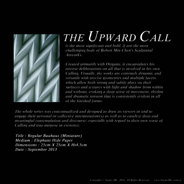 "Very Rare Black Elephanthide Original ""Bauhaus-pleat"" Origami Artwork"
