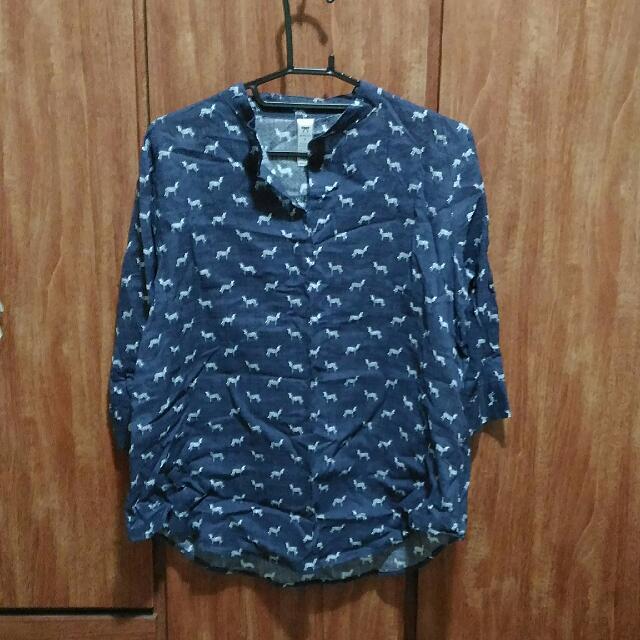 藍色斑馬薄襯衫