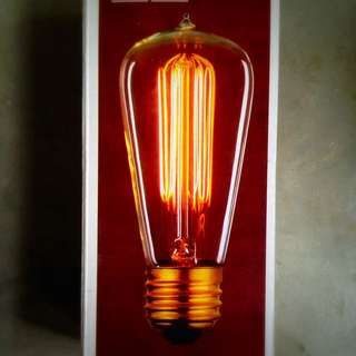 Edison bulb with braided light cabling.