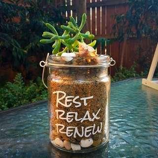 Beautiful Relax Jar  Terrarium Mini Garden