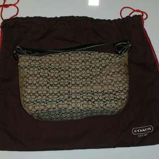 Small Coach Bag (New)