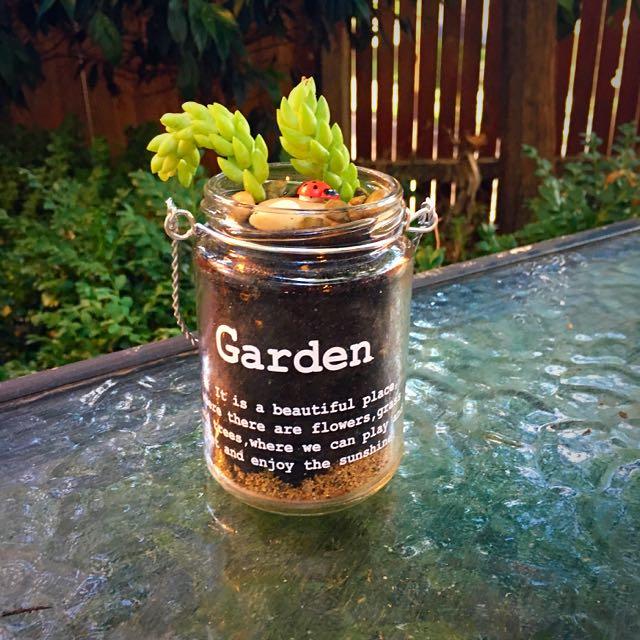 Garden Jar Terrarium