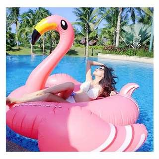 ☀Chi's shop~☀ 現+預 超大甜心粉火烈鳥 BIG MOUTH漂浮墊 披薩游泳圈造型泳圈 海邊充氣浮板 接急單