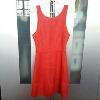 Dotti Bright Orange Skater Dress