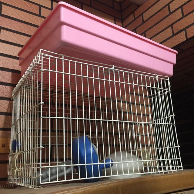 兔籠或天竺鼠籠