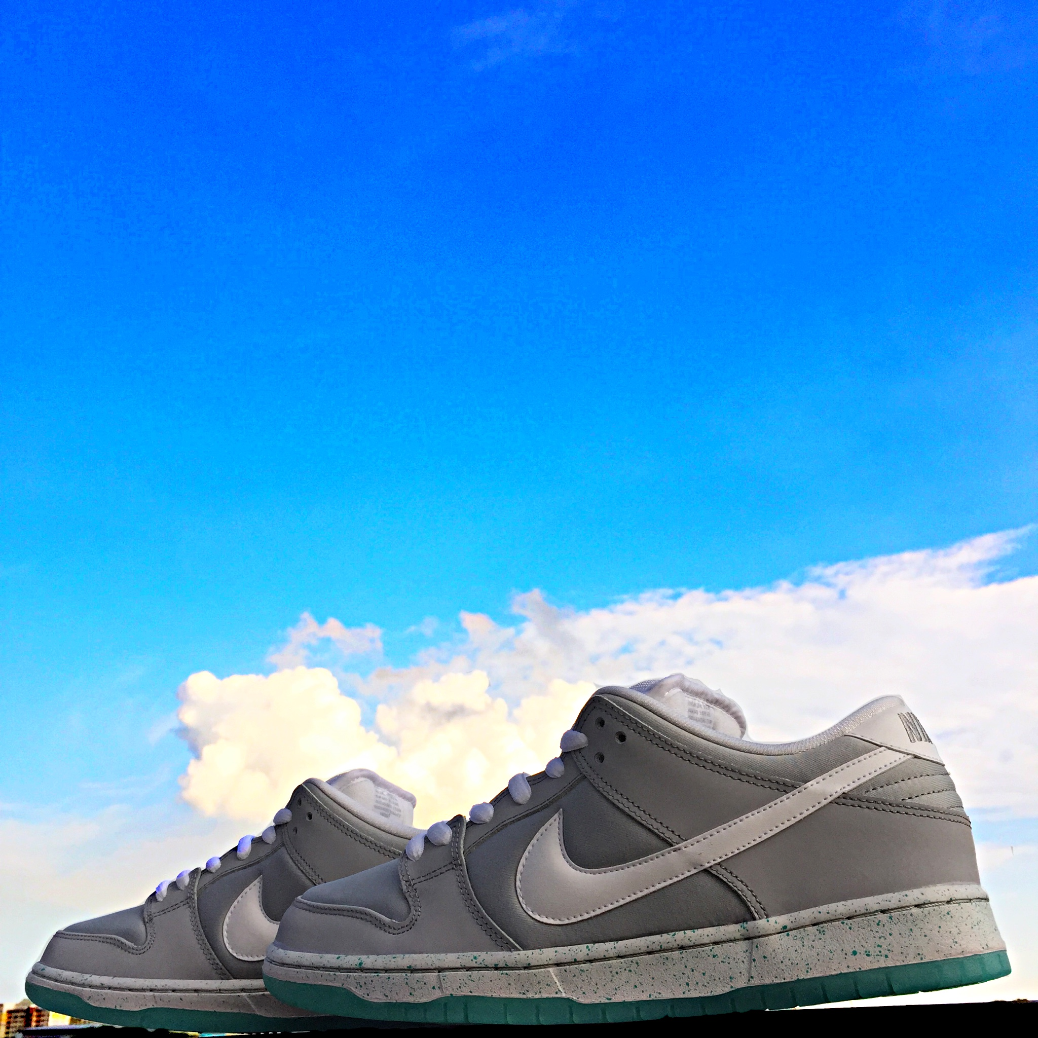 02628a0ab17a Nike Dunk Low Premium SB - Marty McFly - US10