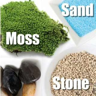 DIY Terrarium basics - Moss, Stones, Soil, Sands, Pebbles, Crystal Spar, Glass Bowl, Decorative figurines, Snowy Flowers, Reindeer Moss, Marino Moss Ball, Potted Pots Etc Etc