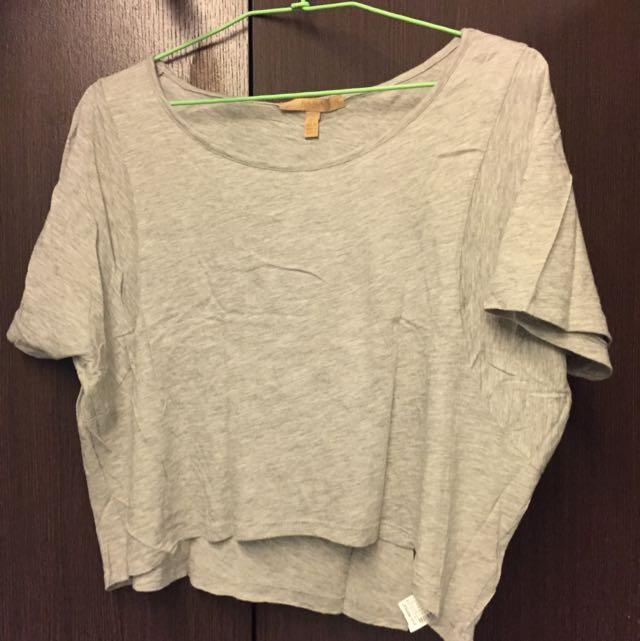 Zara Grey Cropped Top