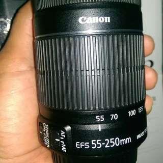 Canon Lens 55-250mm