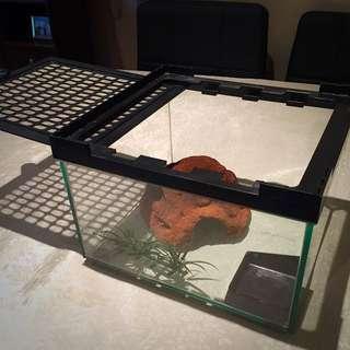 Reptile One Terrarium Tank