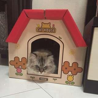 DIY CAT HOUSE CARDBOARD
