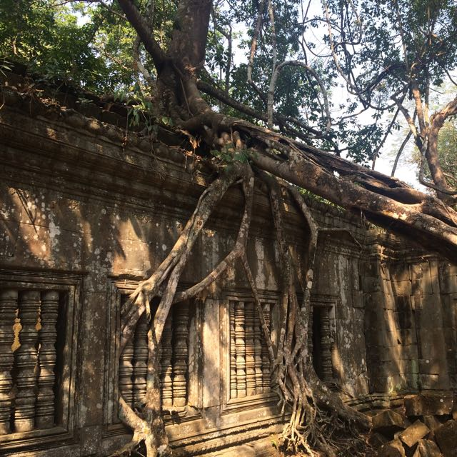 Siem Reap Taxi Driver Tours Daily