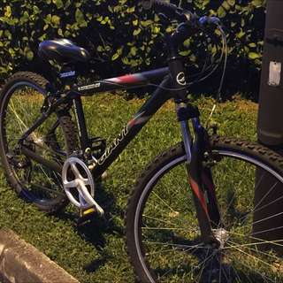 Giant Upland Bike