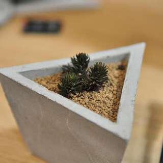水泥盆栽 全手工製作 桌邊好配件