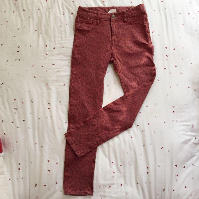✨二手時尚女孩兒👸🏻Lowers farm動物紋單寧貼腿褲