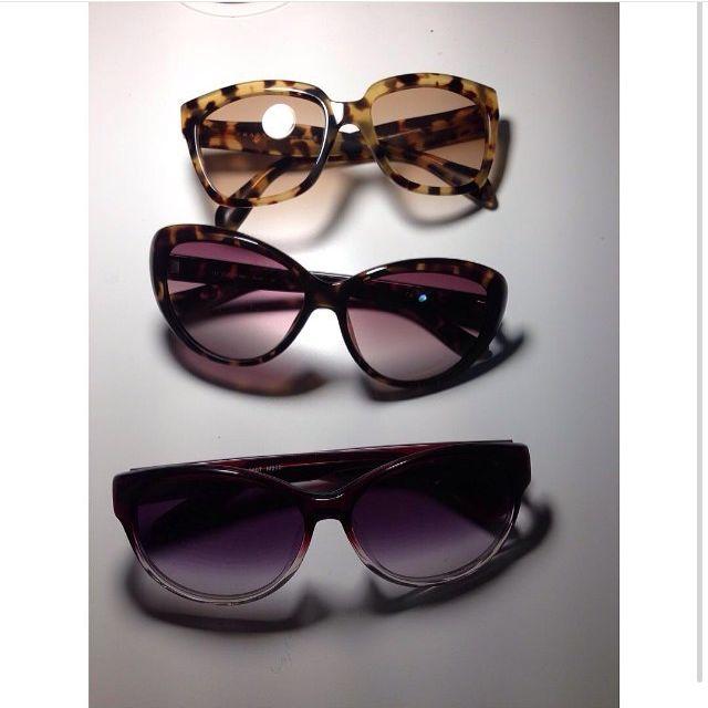 Prada/Calvin Klein/ Marcs Sunglasses