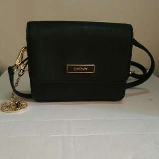 Cute DKNY Clutch/Sml Bag