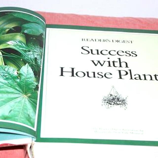Phenomenal Success With House Plants Readers Digest Books Interior Design Ideas Clesiryabchikinfo
