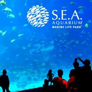 S.E.A. Aquarium tickets