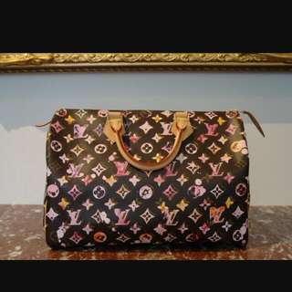 LOOKING FOR: Louis Vuitton Watercolour Speedy 35