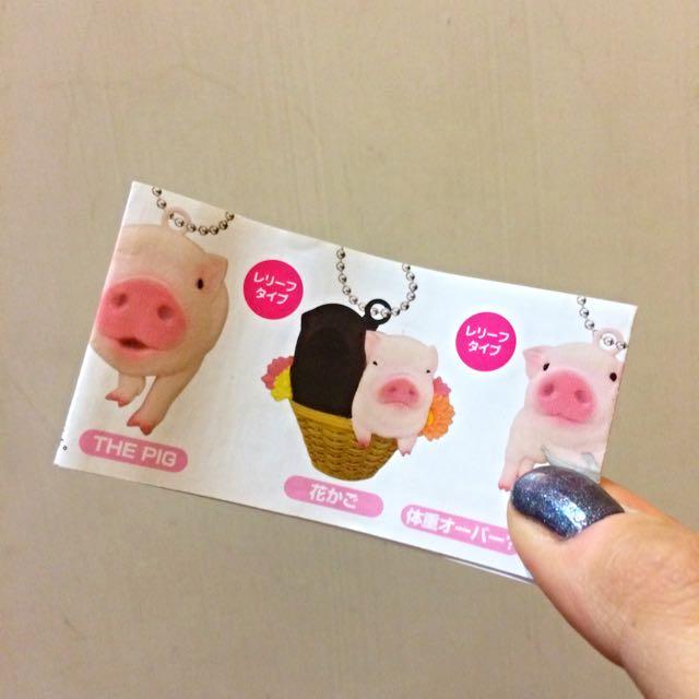 全新扭蛋-The pig