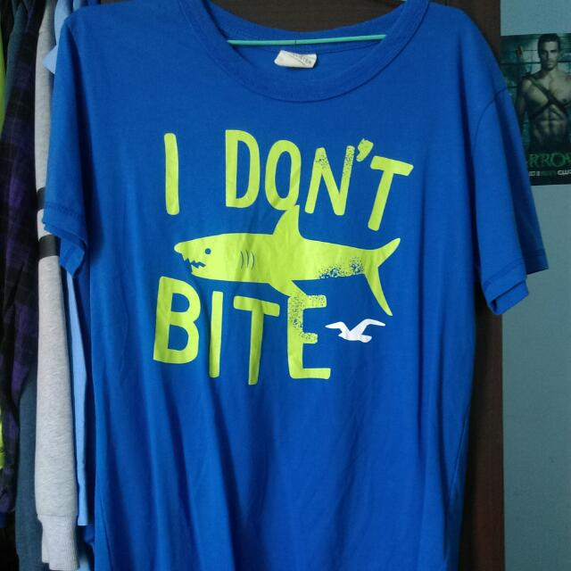 Hollister 海鷗 I Don't bite 短t Tee 祕魯製