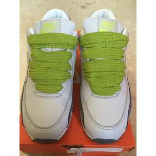 """Nike Air Max 90 Leather """"Cactus Pack 2007 release"""" (US Size 7 Men's)"""