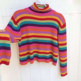 Vintage Rainbow Turtle Neck Crop