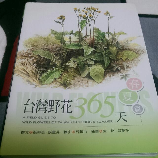 雲拍賣-台灣野花365天(春夏篇)