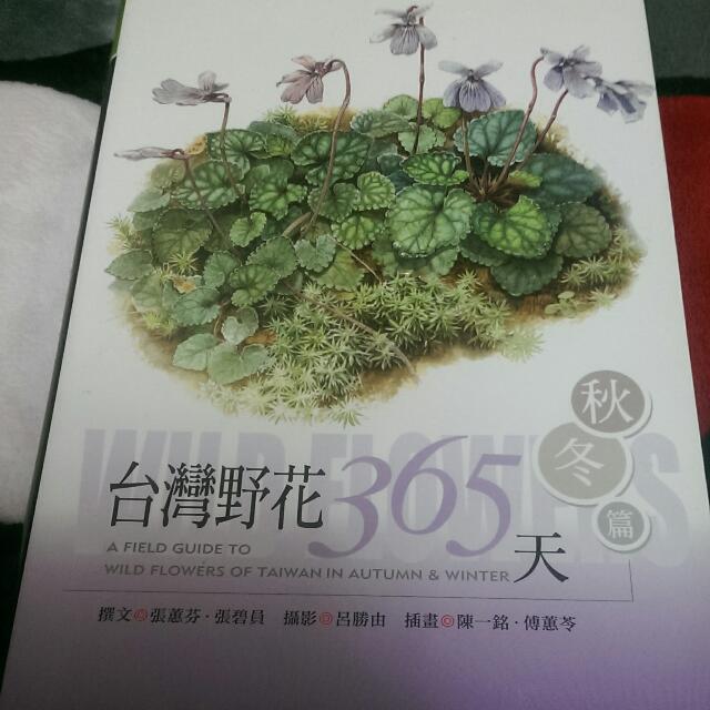 雲拍賣-台灣野花365天(秋冬篇)