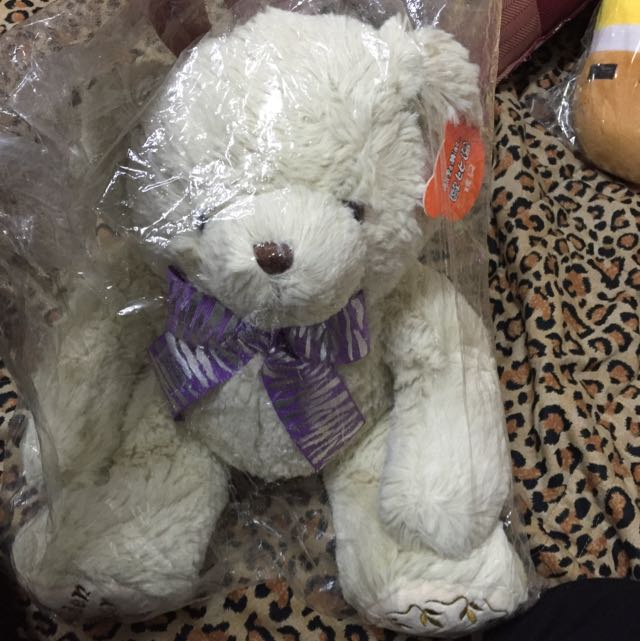 娃娃出清✨✨全新 泰迪熊