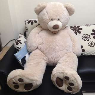 (保留)😍超大柔毛熊熊🐻