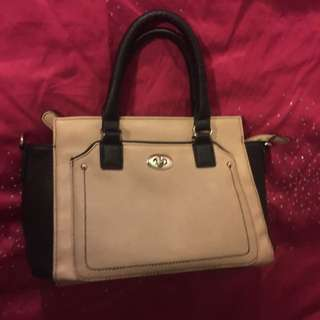 Nude / Black Handbag
