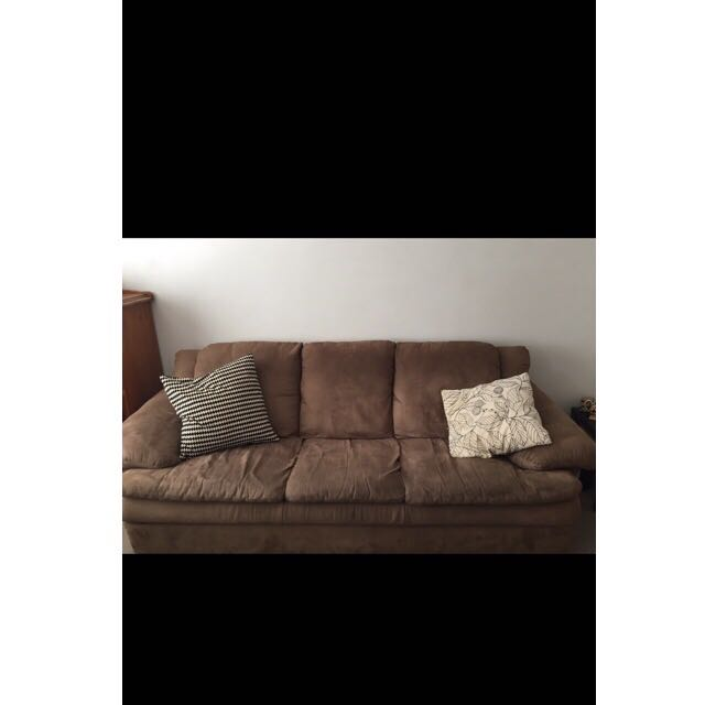 2 & 3 seater Harvey Norman Couches.