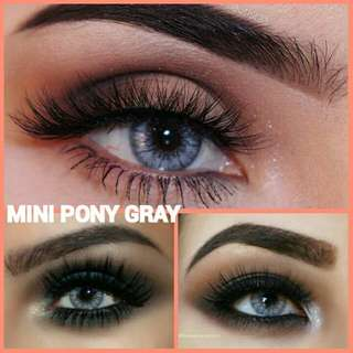 MINI PONY GRAY