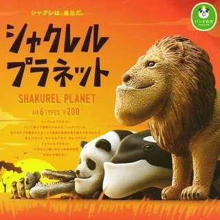 已預訂 戽斗動物園 鱷魚