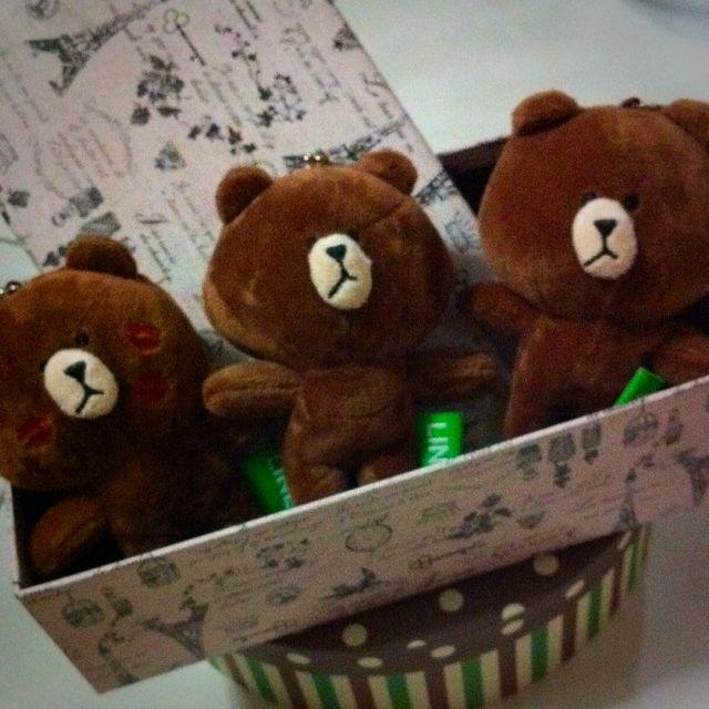 Set Of 3 199 Brown Line Bear Plush Korea Icon Toy