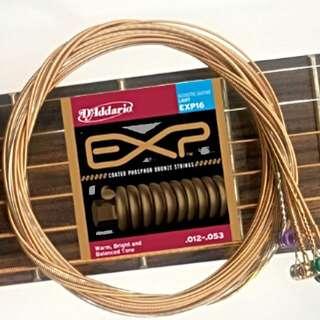 D'Addario Exp16 頂級磷青銅包覆經典民謠弦 (工廠弦)