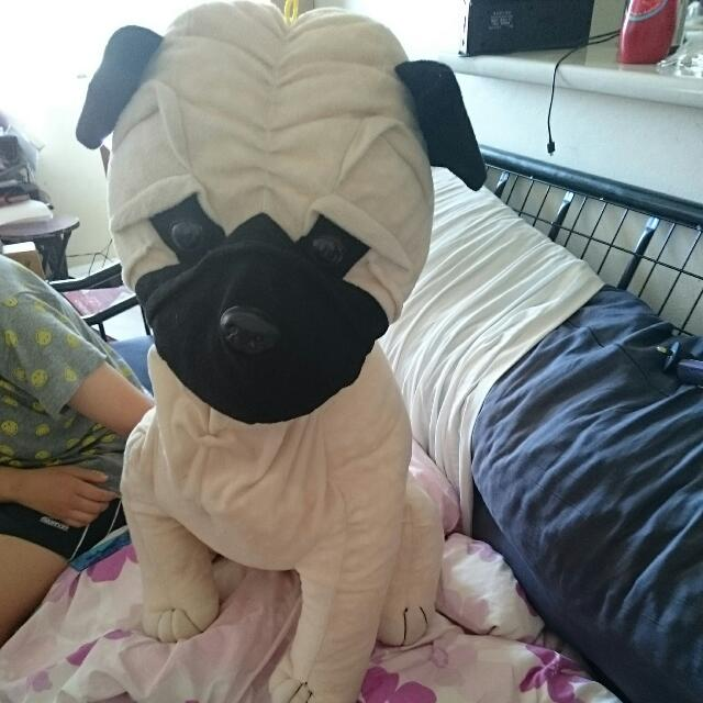 On Hold- 70cm Pug Toy