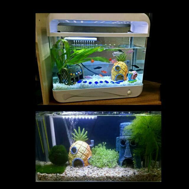 Instock Spongebob Fish Tank Accessories Decorations