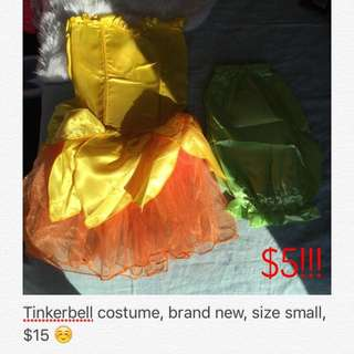 Brand New Tinkerbell Costume 😍