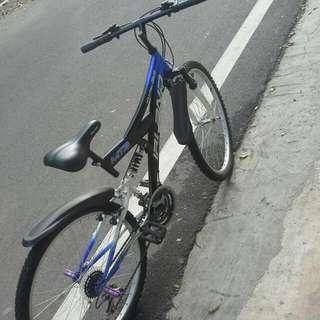 雙避震~腳踏車