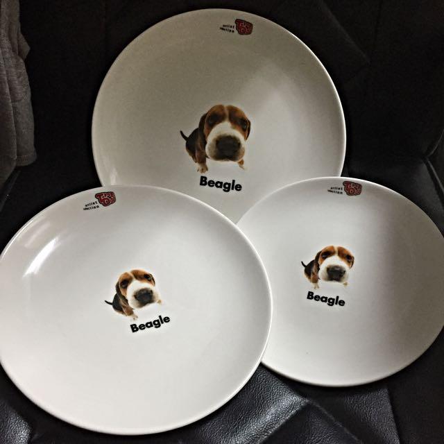 出清 The Dog大頭狗全新正版三入瓷盤