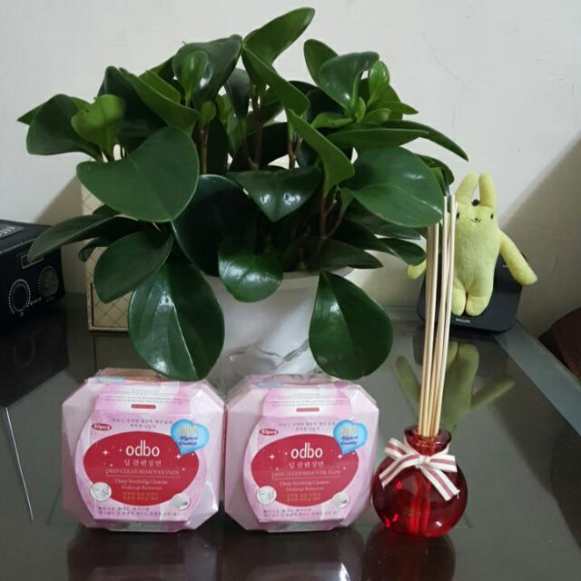 odbo保濕泡沫卸妝棉 1/60片