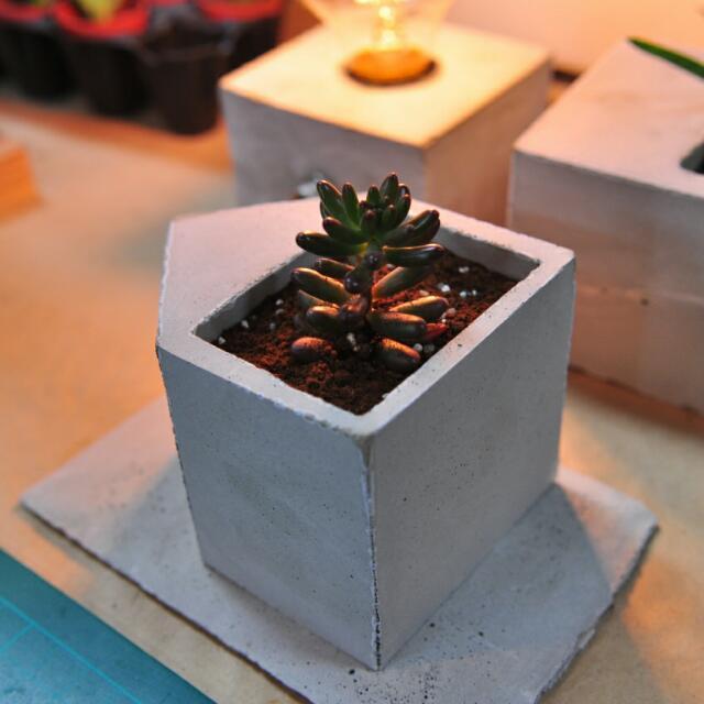 手工水泥盆栽 房子形狀