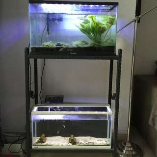 Fish Tank (Complete set with stand)