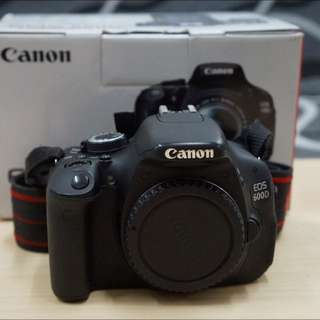 Well-maintained Canon 600D Body