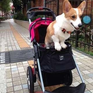 Ibiyaya依比呀呀 充氣胎 寵物推車✨
